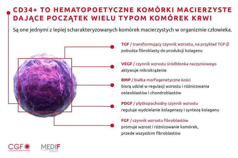 CGF komorki macierzyste Szczecin